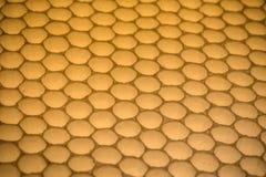 Honeycomb Obrazy Stock