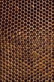 Honeycomb Stock Photography