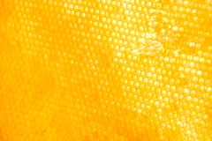 Honeycomb. Yellow Honeycomb with honey. Can be used as background Stock Photography