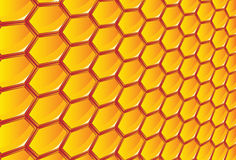 Honeycomb Stock Images