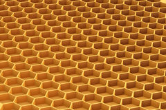 Honeycomb Stock Image
