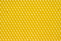 Honeycomb. Yellow honeycomb prepared for bees to start building combs Stock Image