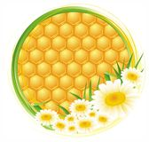 Honeycomb background. Vector illustration of honeycomb with flowers royalty free illustration
