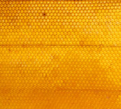 Honeycomb background Stock Photography