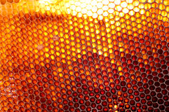 Honeycomb background. Natural honeycomb background or texture Royalty Free Stock Image