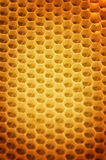 Honeycomb Background. Close-up image stock image