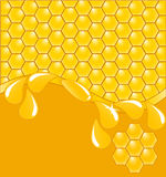 Honeycomb background with drops Stock Image