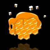 Honeycomb with a bee Stock Photo