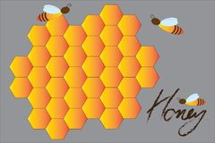 Honeycomb and bee pattern background. Hexagon seamless pattern. vector illustration
