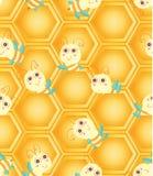 Honeycomb bee seamless pattern Royalty Free Stock Image