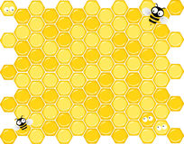 Honeycomb bees Royalty Free Stock Photos