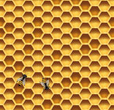 Honeycomb and bees seamless vector background Royalty Free Stock Photography