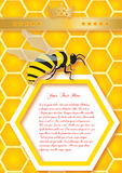 Honeycomb and bees. Vector background. Honeycomb and bees. background in vector format with space for your text Royalty Free Stock Photos