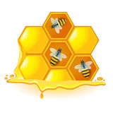 A honeycomb with bees. Vector image of honeycomb with bees Royalty Free Stock Images