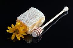 Honeycomb  on black reflexive background Stock Photos