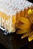 Honeycomb  on black reflexive background Royalty Free Stock Image