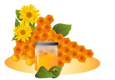 Honeycomb, cdr vector Stock Images