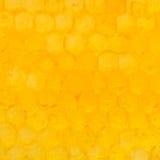 Honeycomb cells under yellow honey Stock Photo