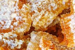 Honeycomb closeup Stock Photos