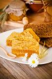 Honeycomb with daisies Stock Photos