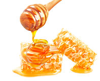 Honeycomb and dipper Stock Image