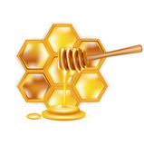 Honeycomb with dipper isolated on white Royalty Free Stock Photo