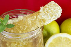 Honeycomb dipper and lemon close up Royalty Free Stock Photo