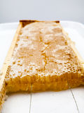 Honeycomb filled with honey Stock Photo