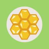 Honeycomb flat design vector Royalty Free Stock Photos