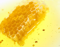 Honeycomb flow Stock Image