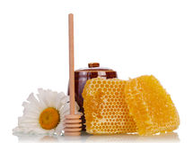 Honeycomb with flower and dipper Royalty Free Stock Photo