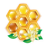 Honeycomb with flowers Royalty Free Stock Images