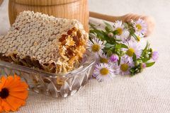 Honeycomb, flowers and honey in glass on sack Royalty Free Stock Photo