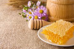 Honeycomb, flowers and honey in pot on sack Royalty Free Stock Photo