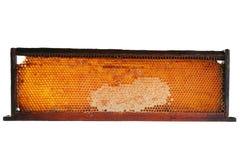Honeycomb frame Stock Photos