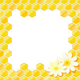 Honeycomb Frame with Flower stock illustration
