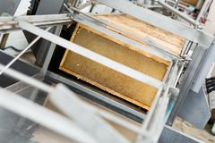Honeycomb Frames In Extraction Plant Stock Photos