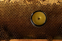 Honeycomb with fresh honey and a vase with cera balsam Royalty Free Stock Photos