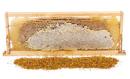 Honeycomb full of honey in wooden frame Stock Image