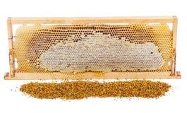 Honeycomb full of honey in wooden frame Stock Image