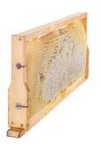 Honeycomb full of honey in wooden frame Stock Images
