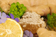 Honeycomb. Ginger, sliced lemons, herbs and honey stock image