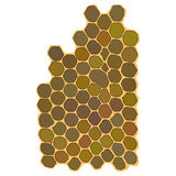 Honeycomb hexagonal honeycombs. Filled with honey. on a white background. Vector illustration for your design Royalty Free Stock Photos