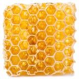 Honeycomb. Stock Image