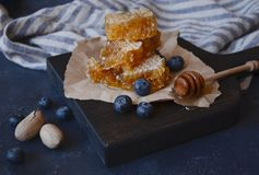 Honeycomb with honey and blueberry royalty free stock photos