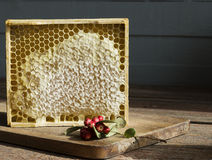 Honeycomb with honey. Close up royalty free stock images