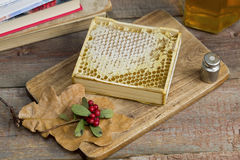 Honeycomb with honey. Close up royalty free stock photography