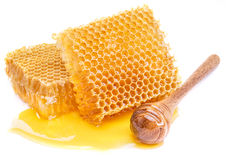 Honeycomb and honey dipper. High-quality picture. Royalty Free Stock Image