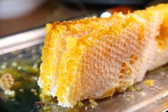 Honeycomb, honey. Products of beekeeping. Royalty Free Stock Photography