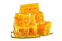 Honeycomb with honey Royalty Free Stock Image